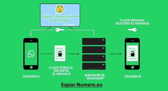 fases para hackear whatsapp
